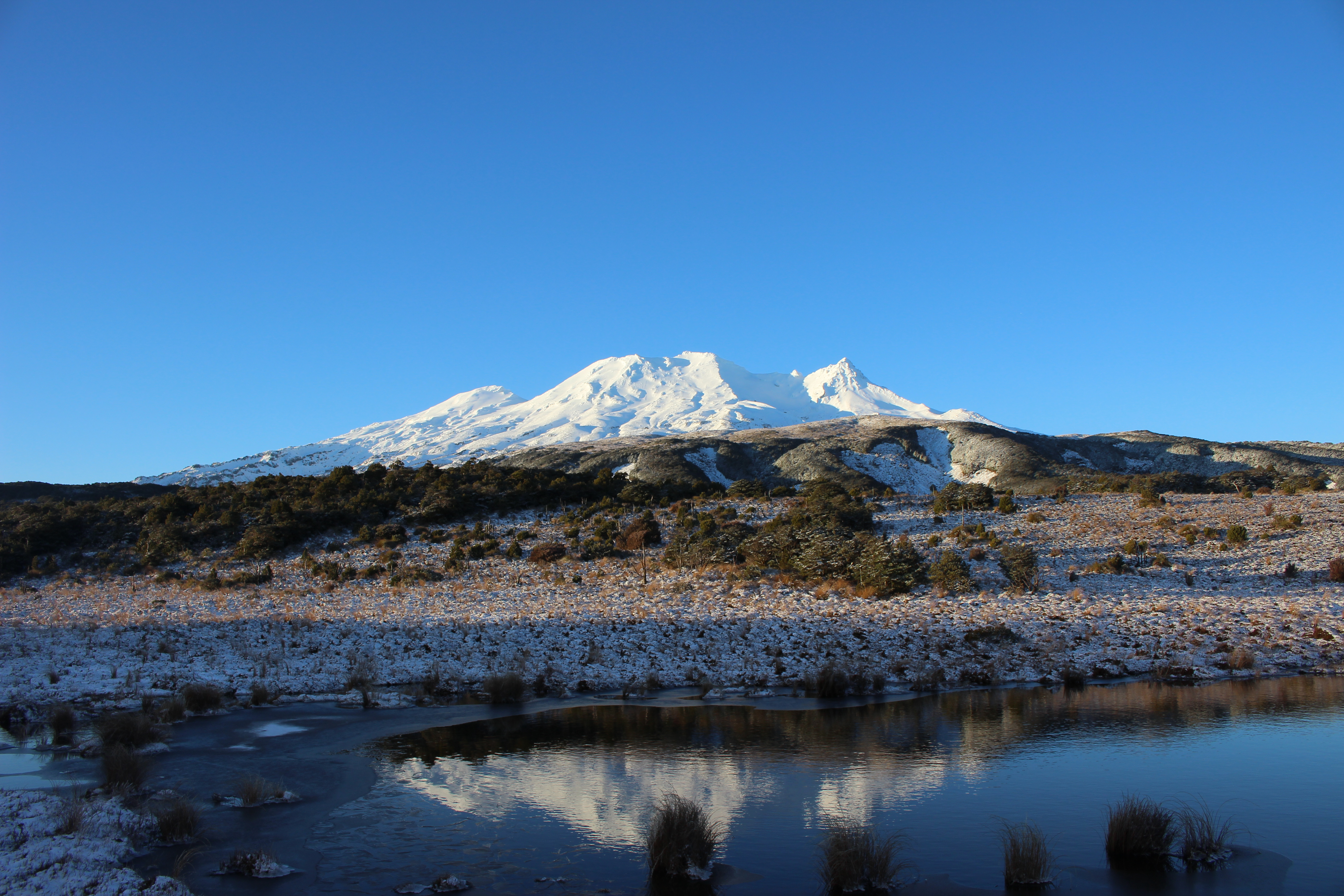 New Zeland Update: Snowboard All Summer In New Zealand. 2016 Winter Update